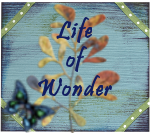 Life of Wonder